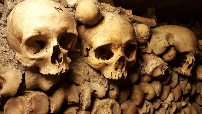 Rămășite scheletice
