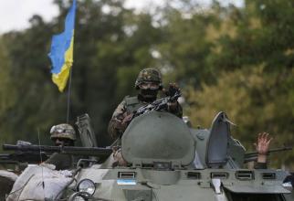 Armata Ucrainei