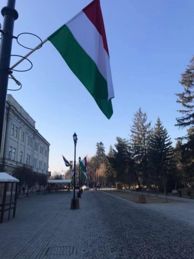 Steagul Ungariei Sf. Gheorghe  Sursa foto: Info Prut